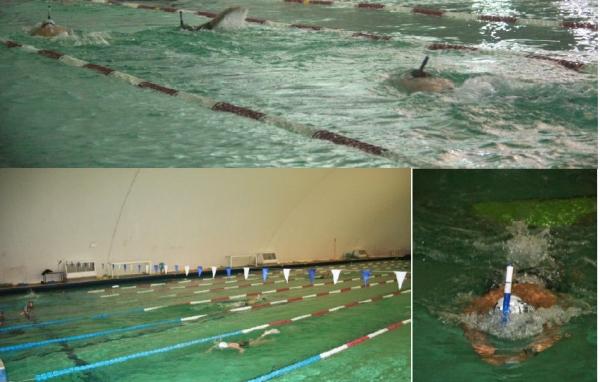 Ffessm nouvelle aquitaine csna plong e et activit s - Nager en piscine avec des palmes ...